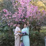 Kimono_Mädels